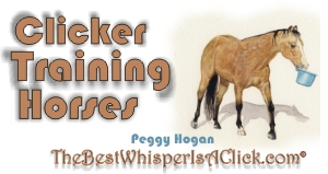 Clicker Training Horses