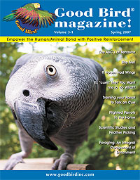 Good Bird magazine